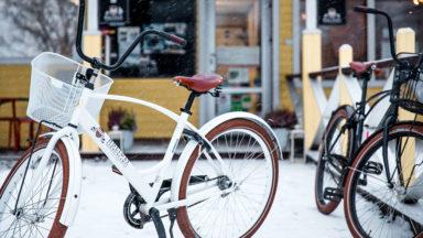 holiday-linnunlahti_bikes_1024x576